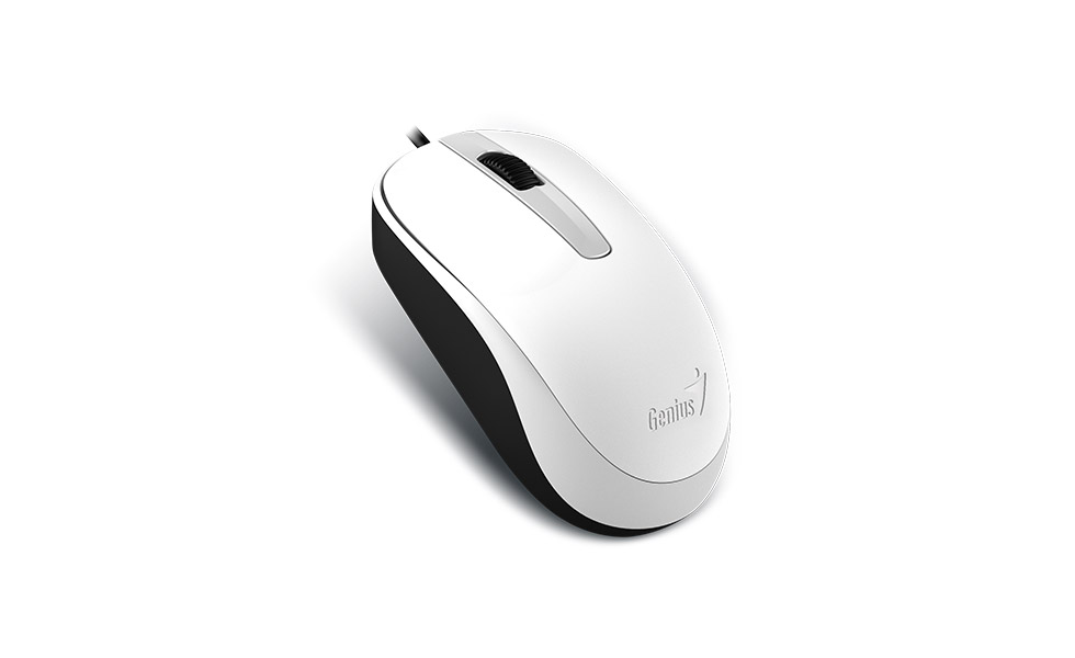 Mouse  Genius DX-120 USB WHITE  G5